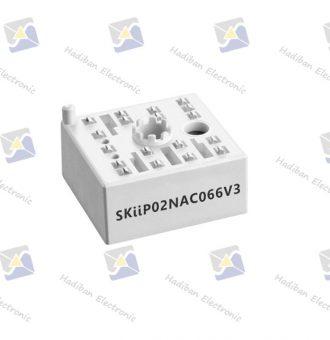 SKiiP02NAC066V3